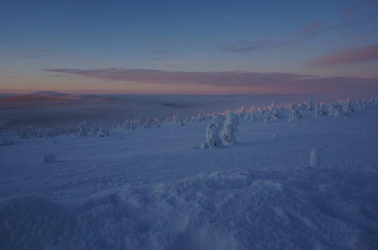Das Bild ist um zwölf Uhr entstanden, da hat die Sonne ihren Höhepunkt erreicht und geht wieder unter. Die Bäume auf den Fjellen leuchten pastellrosa.