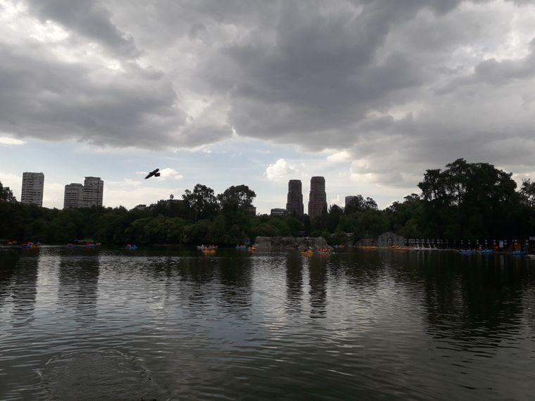Einmal tief Luft holen: Im Chapultec-Park kannst du zumindest für einen Moment dem Trubel entkommen.