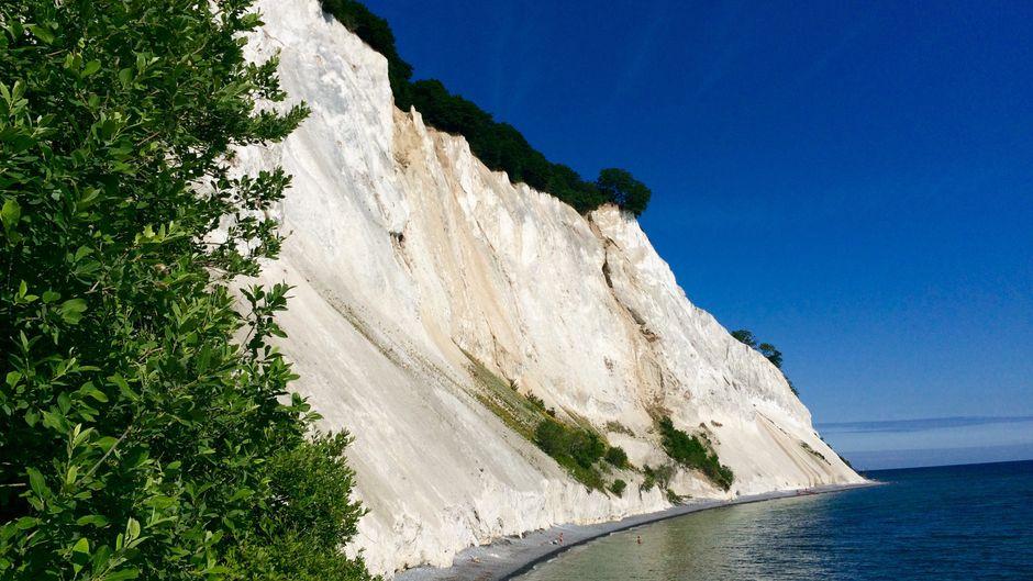 Die Kreidefelsen und der Buchenwald von Møns Klint sind Wahrzeichen der dänischen Insel.