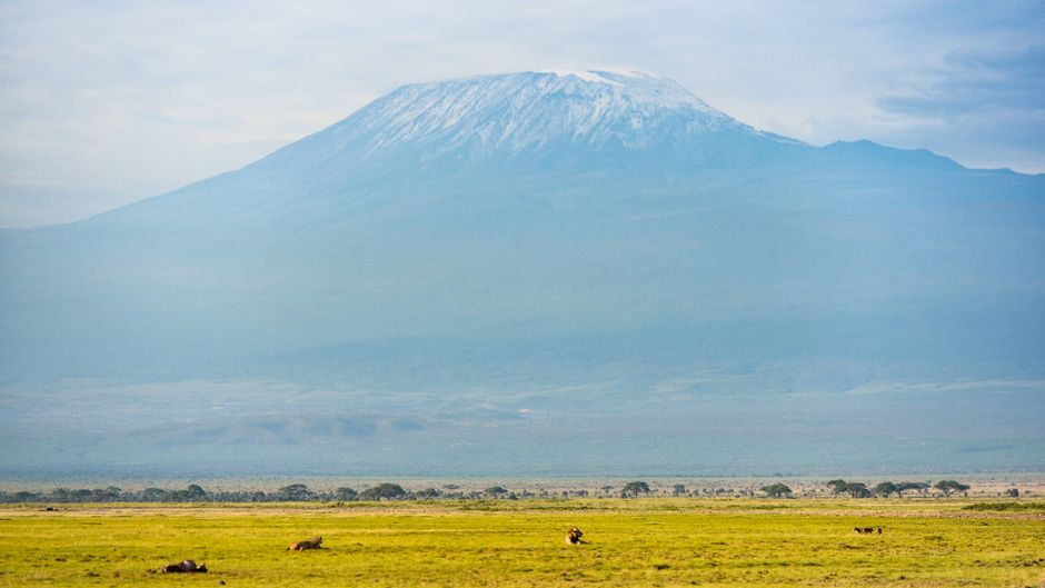 Blick auf den Kilimandscharo im Amboseli-Nationalpark in Kenia.