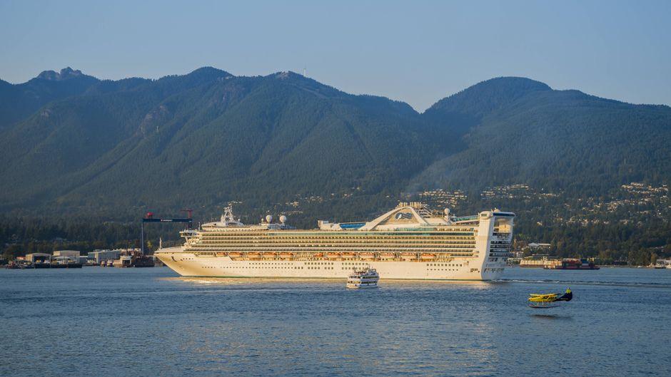 """Das Kreuzfahrtschiff """"Golden Princess"""" war auf dem Rückweg von Neuseeland nach Australien. (Symbolfoto)"""