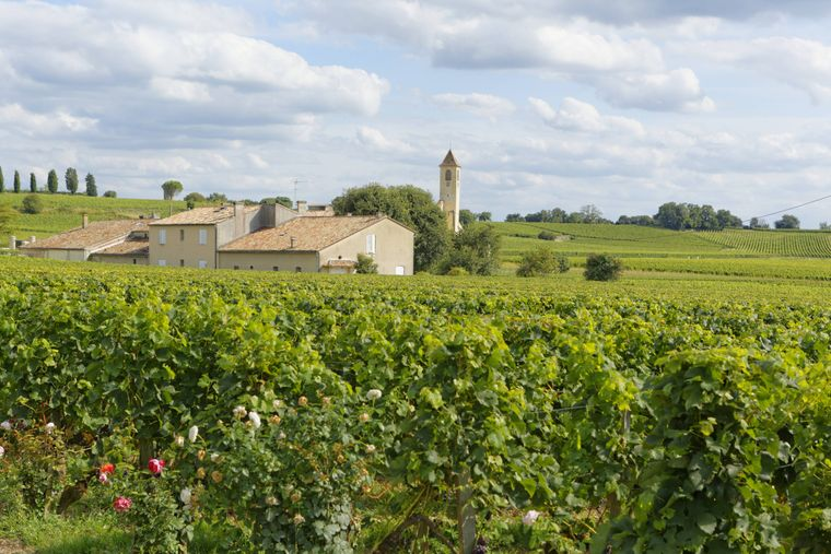 Weinanbaugebiet und Weingut Mazerat in Saint-Émilion in Frankreich.