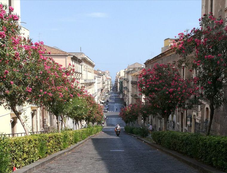 Eine typische Straßenszene in Catania: Rollerfahrer und im Hintergrund das Meer.