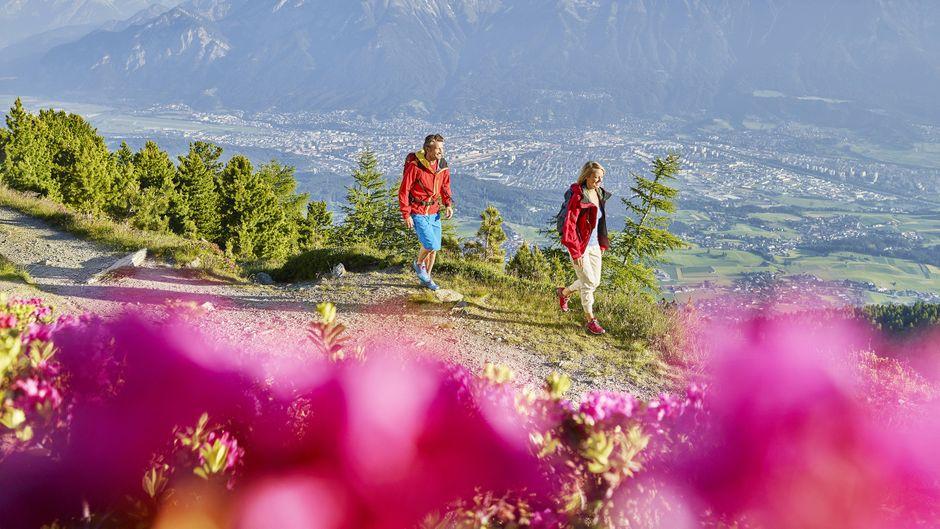 Der Patscherkofel hat einige idyllische Wanderwege und Etappen zu bieten.