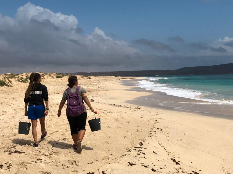 Bis in den frühen Morgen ist die Strandpatrouille unterwegs. Nester, die zu dicht am Wasser liegen, werden gleich umgebettet. GPS-Daten und Anzahl der Eier werden erfasst.