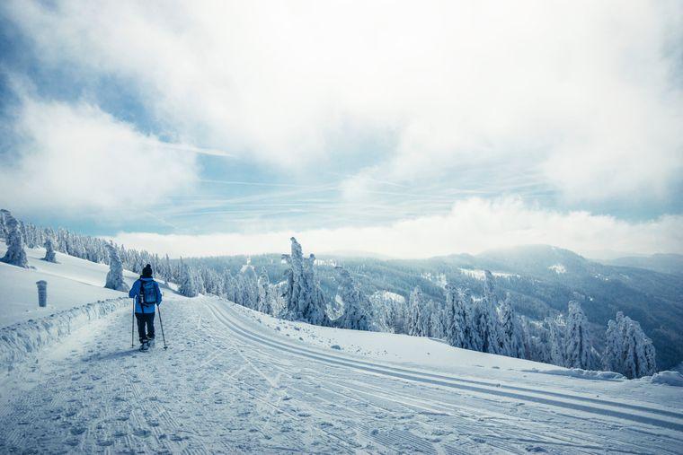 Auf dem Feldberg-Panoramaweg im Hochschwarzwald bieten sich dir bei einer Winterwanderung atemberaubende Aussichten.